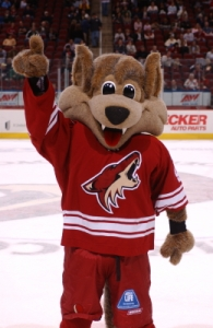 Coyotes Mascot Howler Correctly Identifying Which Direction the Franchise is Headed.